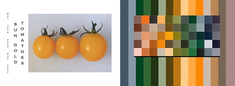 An Organic Palette vI.indd