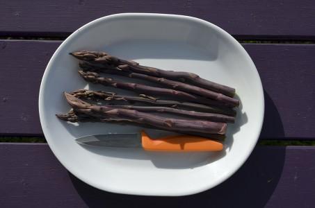 asparagus harvest 2015