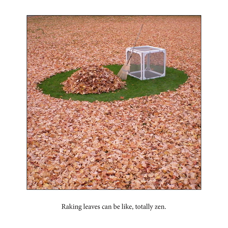 Minimalism White Cube Photography Humor Adam Blue
